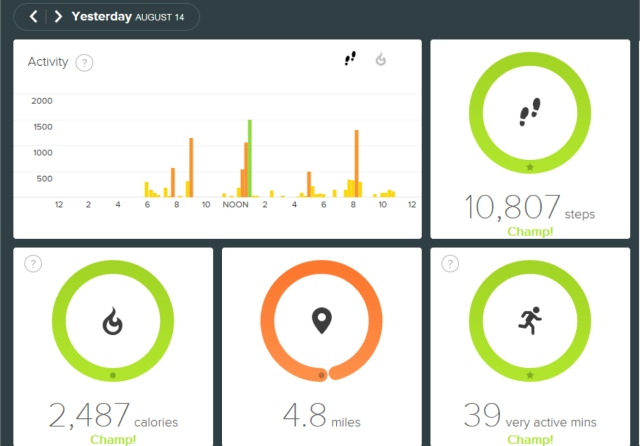 Fitbit screen1